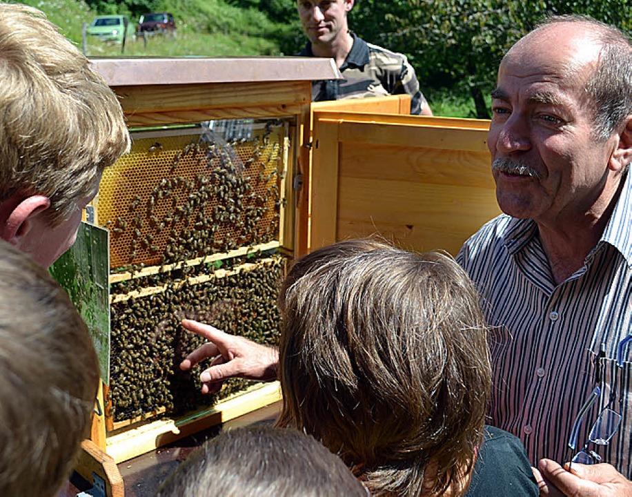 Großer Andrang am Schaukasten mit Honi...ndlin zeigte den Kindern die Königin.   | Foto: paul berger