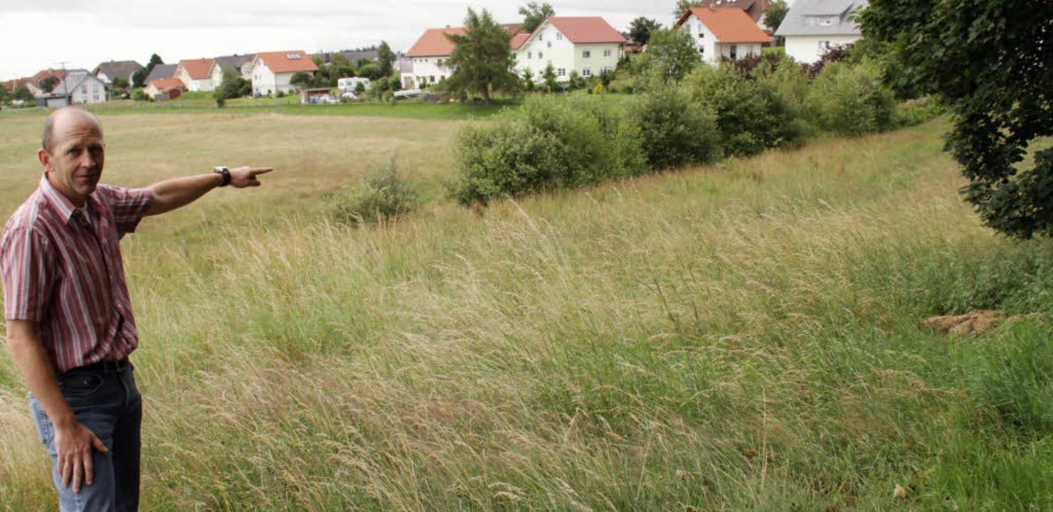 Ein Teil der im Flächennutzungsplan en...handenen Baum- und Heckenbestand hin.   | Foto: Wilfried Dieckmann
