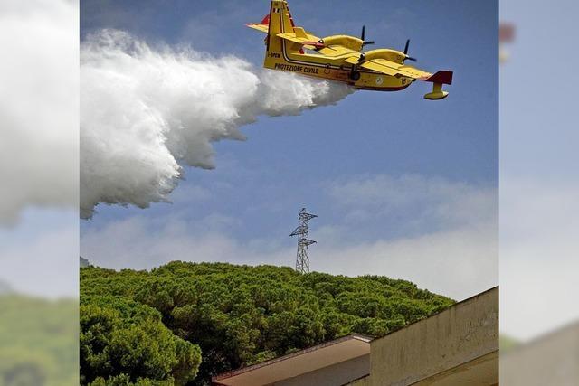 Immer mehr Waldbrände in Südeuropa