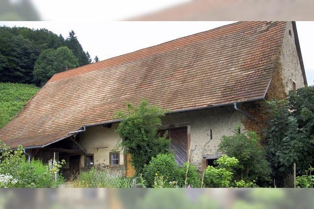 Neue Pläne für den Rinzberghof