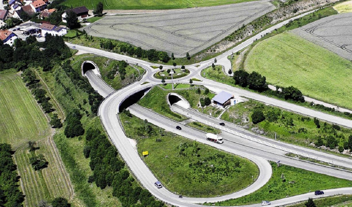 Seit nunmehr zehn Jahren verschwindet ...ckenden Tunneleinfahrten. Bild: Minzer  | Foto: Minzer