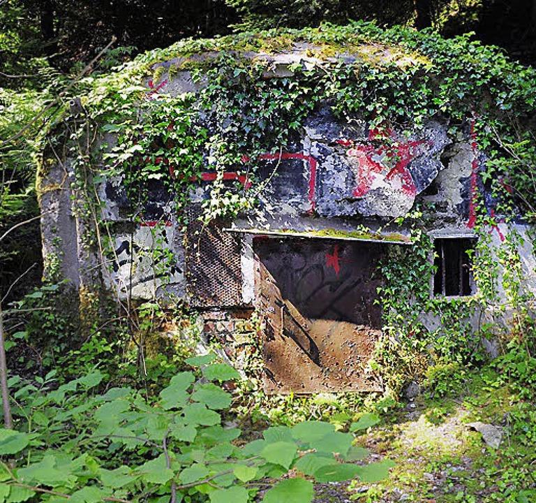 Ein alter Stollen-Eingang am Berg  | Foto: Thomas Kunz