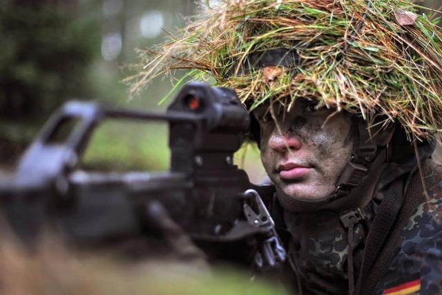 Streit um Militärgelände im Hartheimer Rheinwald