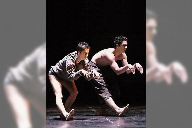 Orpheus lässt die Fässer tanzen