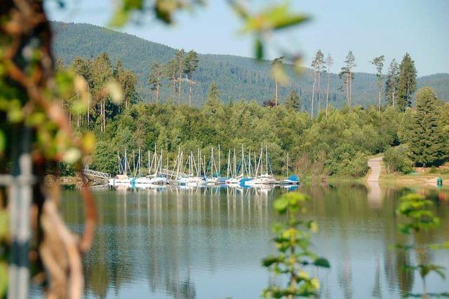 Müll am Schluchsee – Gemeinde sucht Putzdienst für das Ufer