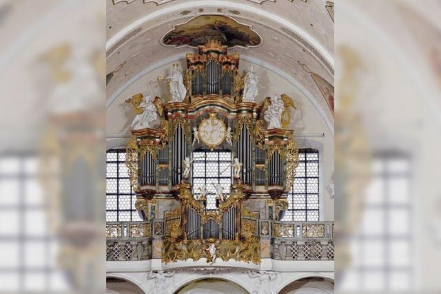 Ein Gespür für die Orgel entwickeln