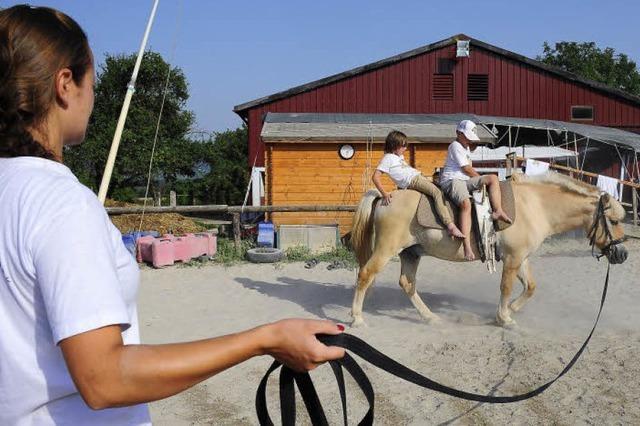 Ein Paradies für Jungs und Pferde