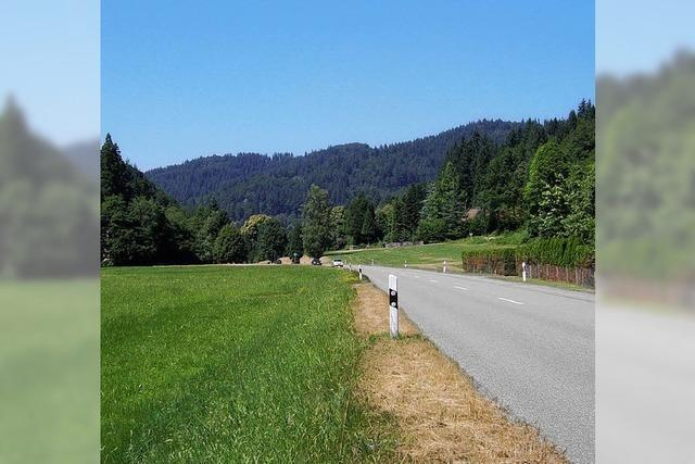 Der Radweg von Günterstal nach Horben wird gebaut