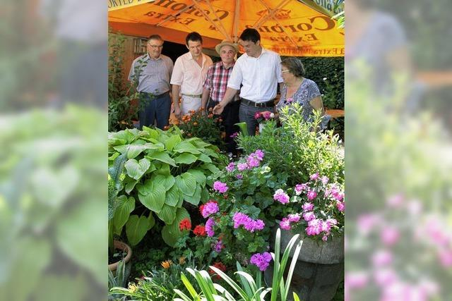 Viel Lob für fleißige Gärtner