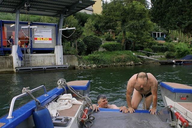 Ein Biber schwimmt mit