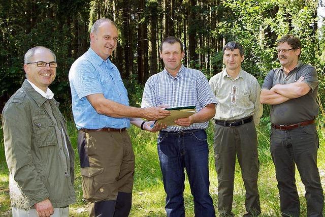 Mehr Holz schlagen und Geld verdienen