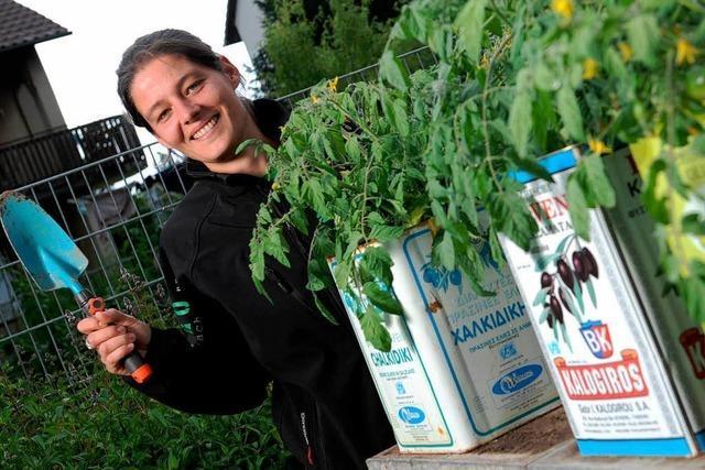 Urbanes Gärtnern bei Beet2go: Mangold aus der Mülltonne