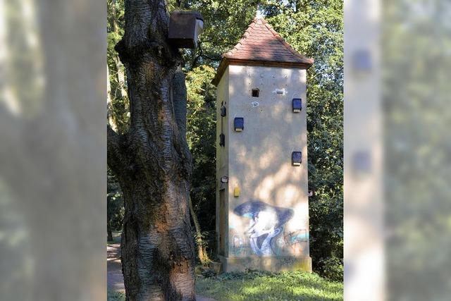 Goethepark: Nabu baut Umspannturm zur Brutstation für seltene Vögel um