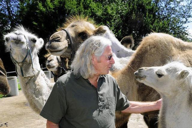 Mundenhof: Der Herr und Meister der Kamele geht