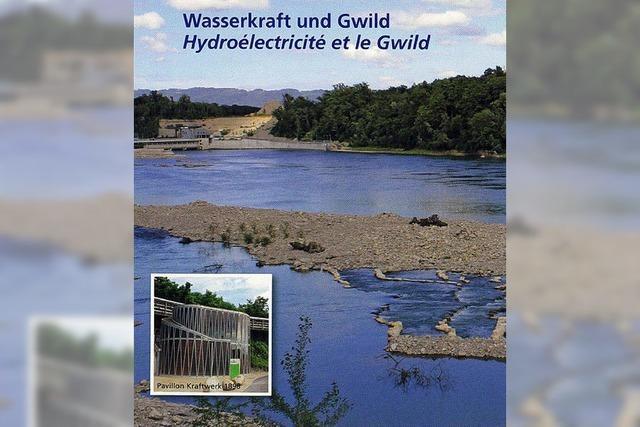 Der Rheinufer-Rundweg bietet Touristen ein Erlebnis