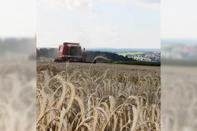 Landwirte sind im Dauereinsatz