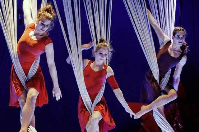 Circus Monti in Basel