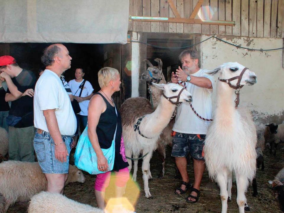 Uwe Braun, Trekking-Chef bei  Lama &am...trekking mit seinen Besuchern im Stall  | Foto: Anja Bertsch