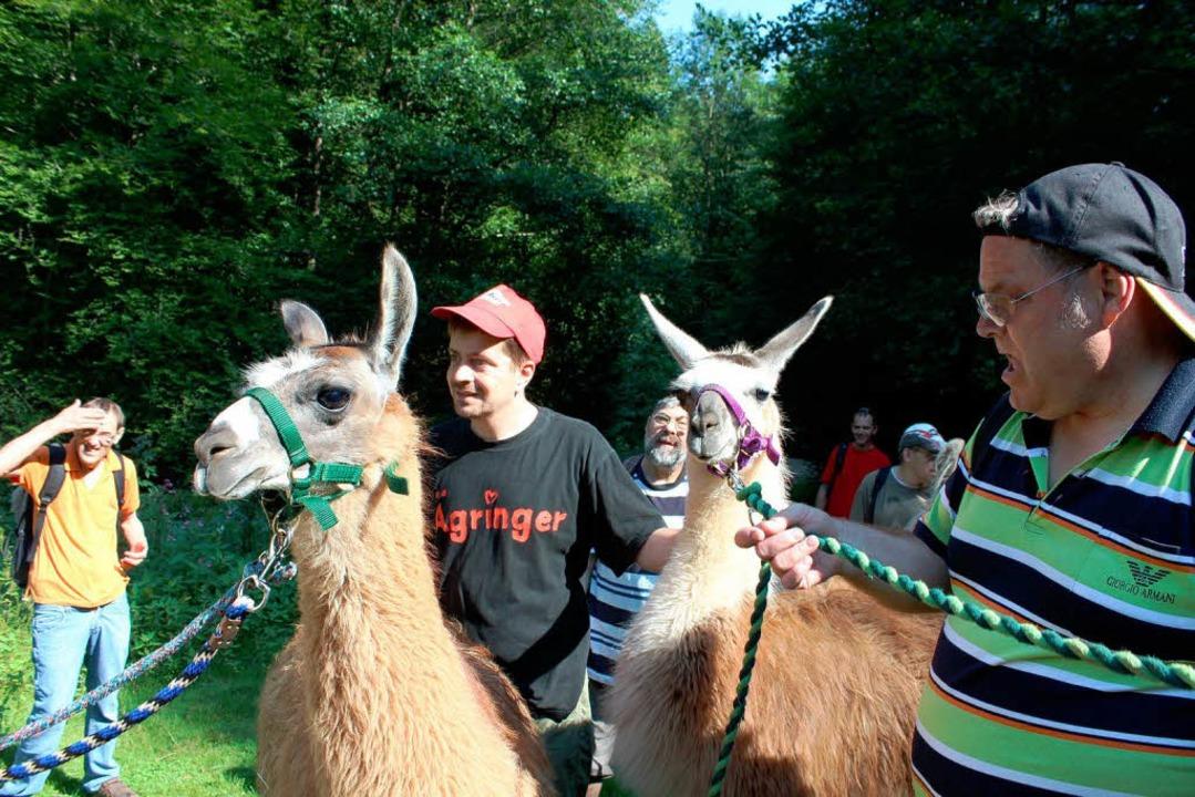 Ein freundliches Wesen haben Lamas.Und...halb gut auf Menschen mit Behinderung.  | Foto: Anja Bertsch