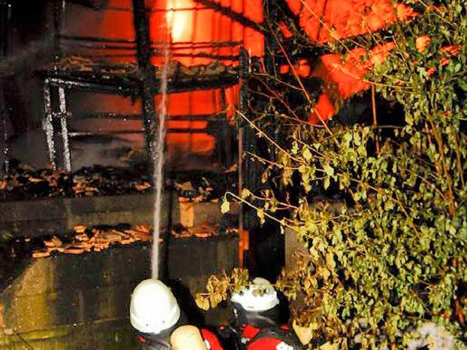 Feuer an der alten Ziegelei bei Breisach  | Foto: Feuerwehr Breisach