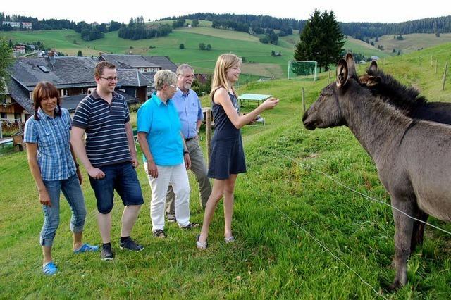 Bauernhofquiz und Eselführerschein