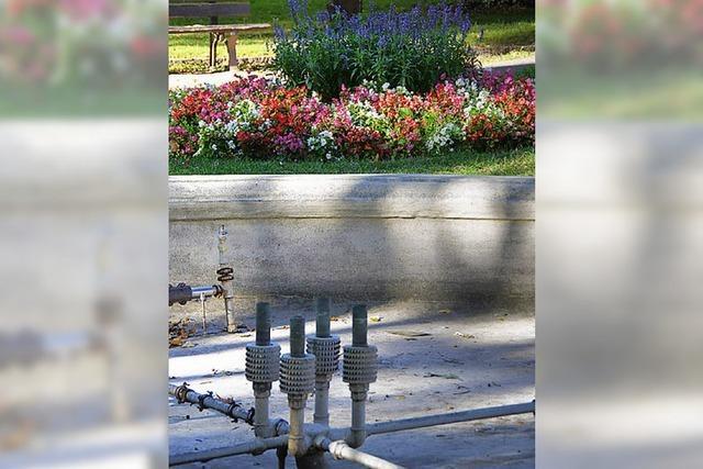 Etliche Brunnen fließen wieder