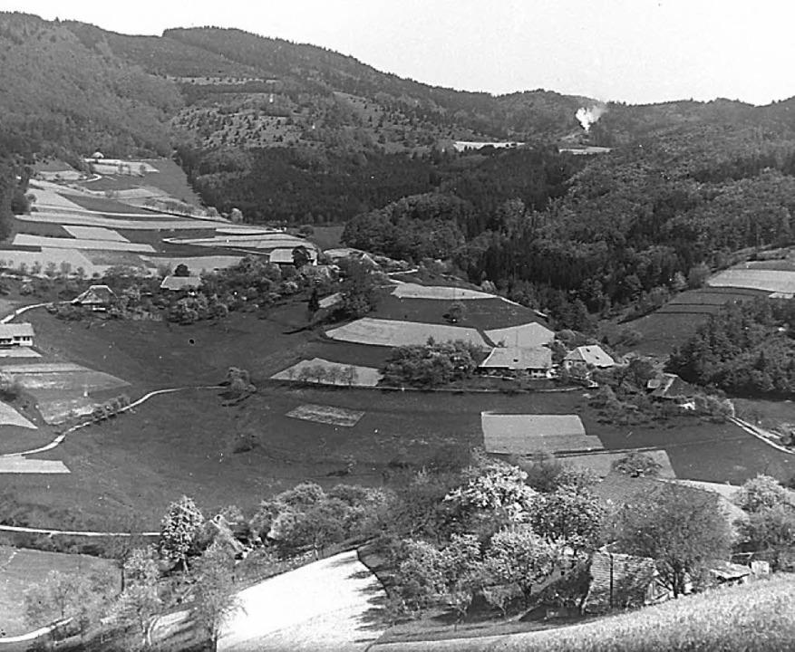 Bürchauer Sonnhalde: Die Hänge waren i... landwirtschaftlich intensiver genutzt  | Foto: privat
