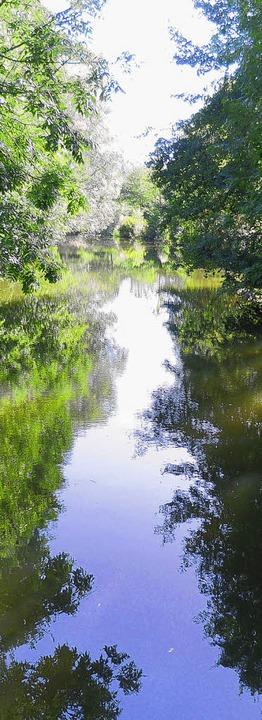 Der Zufluss zum Mühlekanal führt Wasser.  | Foto: Lendle