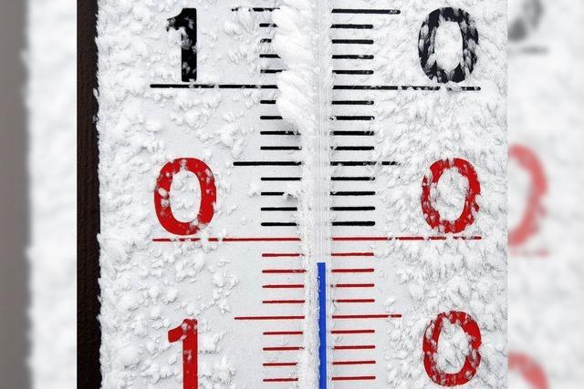 DIE SPINNEN, DIE RÖMER: Einfallsreich gegen die Hitze