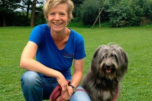 Warum Hunde zubeißen – und wie man das vermeiden kann