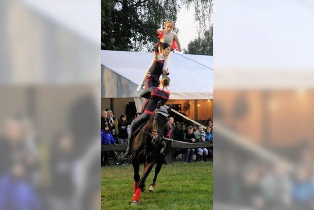Junge Reiter ganz akrobatisch