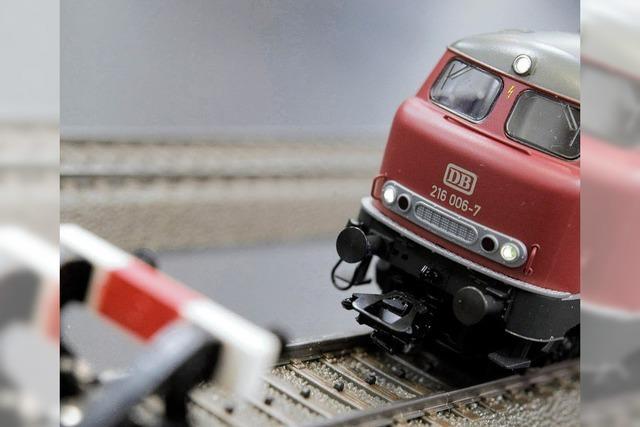 Elektrifizierung der Hochrheinstrecke wird forciert - Bahn fürchtet neue Konkurrenz