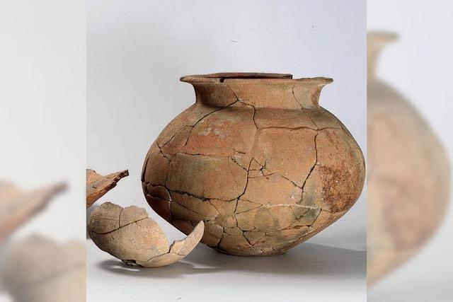 Kleinbasel vor 3300 Jahren