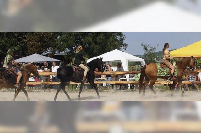 Westernreiten – ein Sport, der immer populärer wird