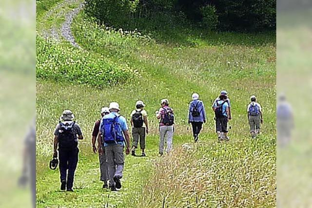 Wanderwochen in Lenzkirch