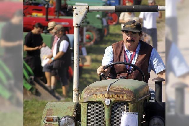 Alte Traktoren sind ein Hit
