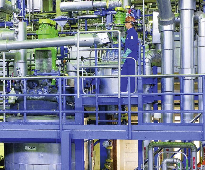 Industriestandort oder nicht? Bürgerme...ieser Frage eine Zukunftswerkstatt an.  | Foto: privat