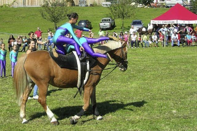 Große Kür zu Pferde