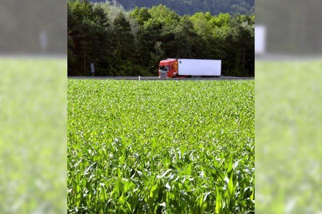 Freiburg lehnt Biotop an A 5 ab