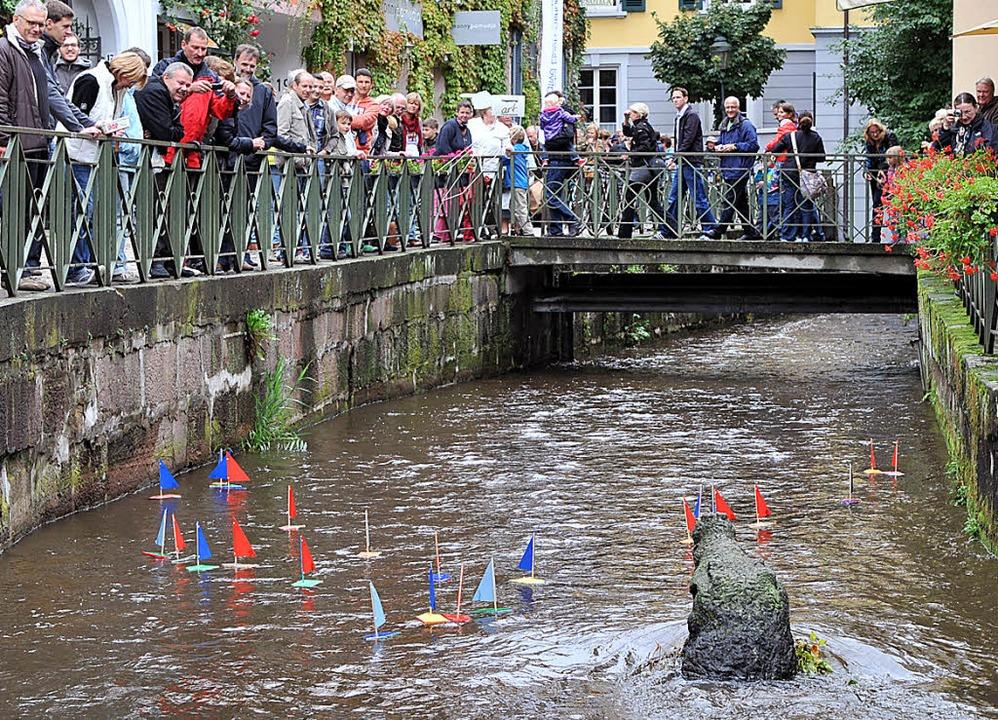 Buntes Treiben im Gewerbebach: Unter g...rbei – eins hat danach gefehlt.   | Foto: rita eggstein