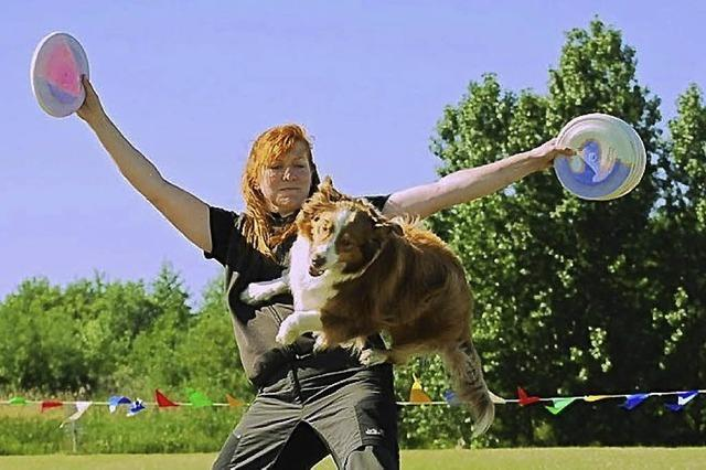 Hundefrisbee-Turnier in Kirchzarten