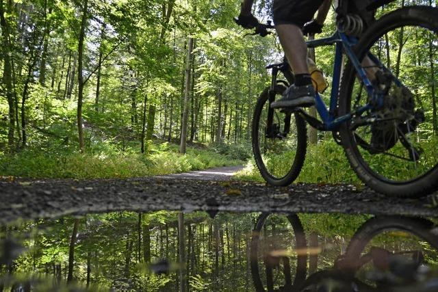 Mountainbike-Trainingsflächen: Freiburger Forst im Visier