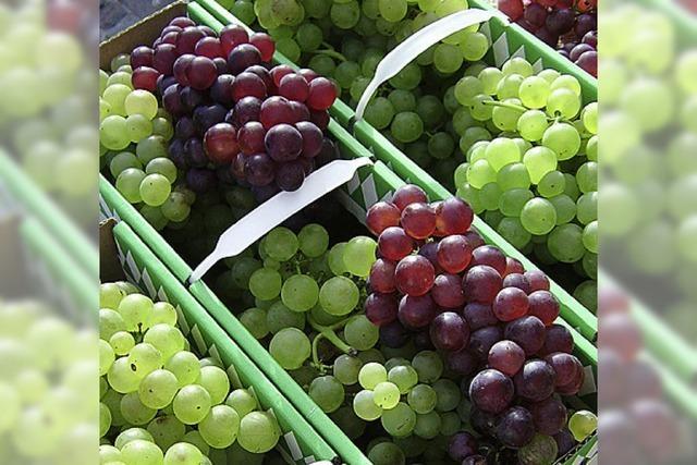 Voller Antioxidantien