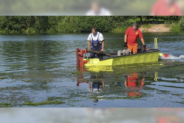 Gifizsee: Wasserqualität weiterhin gut