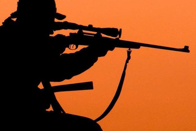 Jäger erschießt versehentlich Wallach – Konsequenzen drohen