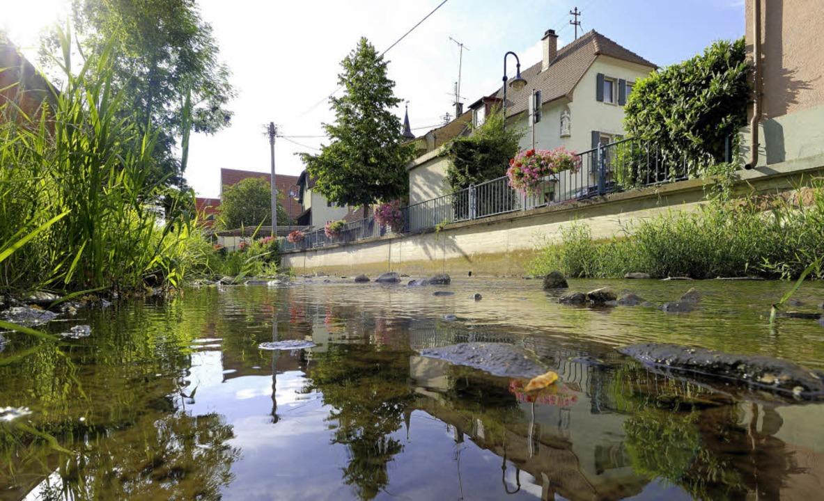 Das Gebiet, das in Ehrenstetten neu ge...in die Platzgestaltung einzubeziehen.     Foto: Siegfried Gollrad