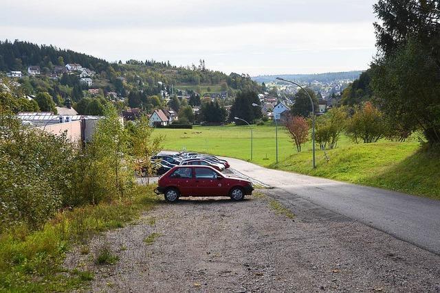 Wiese wird zum Parkplatz