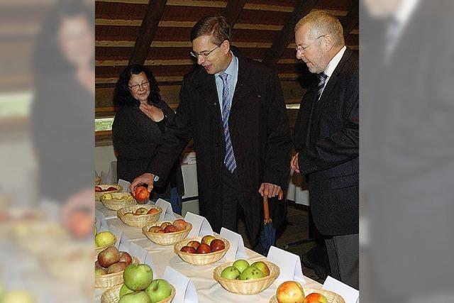 Große Bühne für den Apfel