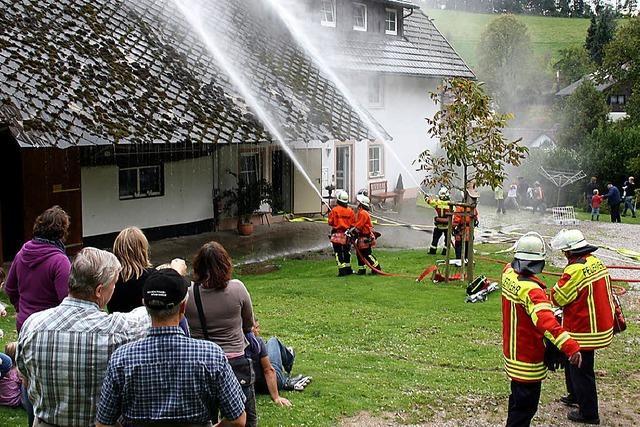 Brandalarm im Bauernhof