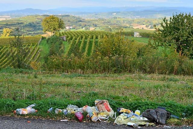 Plastikmüll am Wegesrand